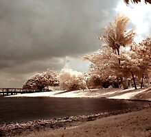 Infrared at Cyberjaya 3 by zoule