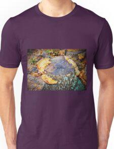Shelf fungus Unisex T-Shirt
