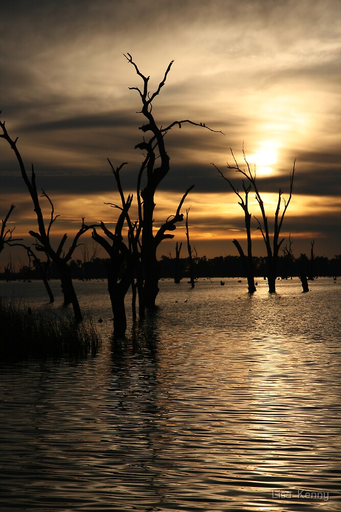 Lake Mulwala by Lisa  Kenny