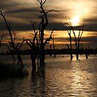 Lake Mulwala by Lisa  Kenny