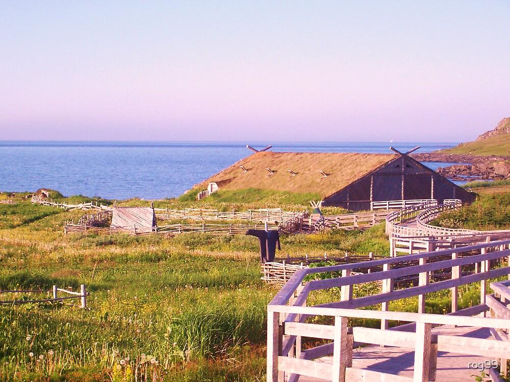 Vikings Settlement-2 by rog99