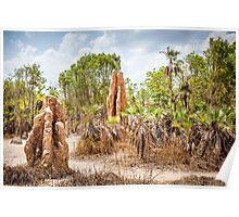 Termite Mound Poster