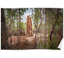 Termite Mound, Litchfield National Park Poster