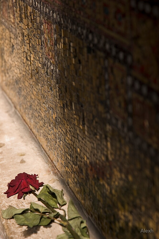 Love Lost? by Alexh