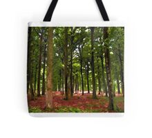 Beautiful Forest landscape Tote Bag