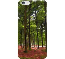 Beautiful Forest landscape iPhone Case/Skin