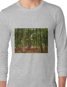 Beautiful Forest landscape Long Sleeve T-Shirt