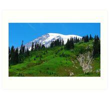 Mount Rainier 534 Art Print