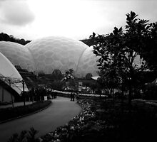 Eden Project by Jonathan Kereve-Clarke (Coventry Artist)