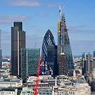 Gherkin and cheese grater - London UK by Norman Repacholi