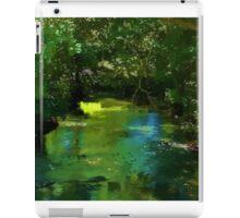 Small beautiful brook stream in a forest iPad Case/Skin