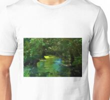 Small beautiful brook stream in a forest Unisex T-Shirt