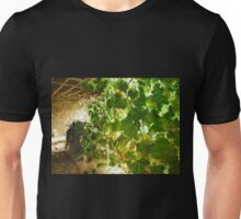 Pergola covered by hanging grapevines Unisex T-Shirt