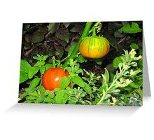 Color garden Greeting Card