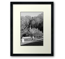 flag Framed Print