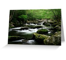 Mossy Mountain Stream Greeting Card