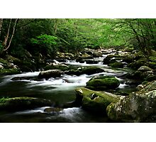 Mossy Mountain Stream Photographic Print