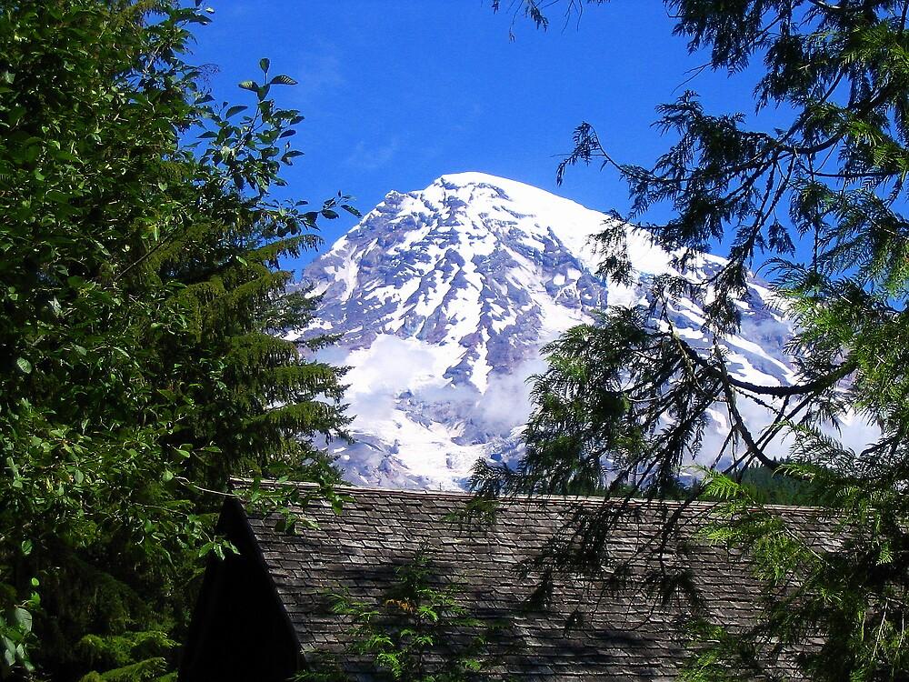 Mount Rainier 096 by jduffy111
