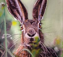 Brown Hare by Jane Smith