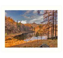 Autumn at Blea Tarn Art Print