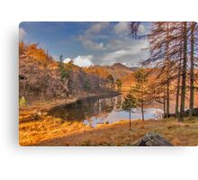Autumn at Blea Tarn Canvas Print