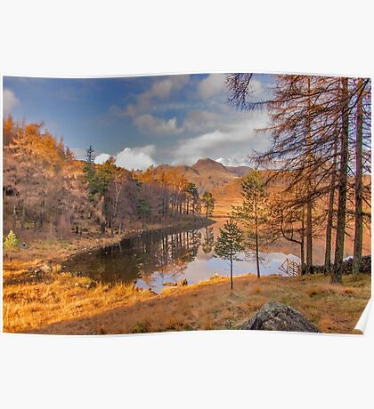 Autumn at Blea Tarn Poster