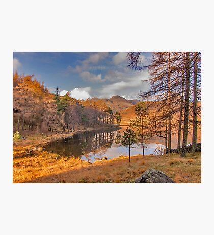 Autumn at Blea Tarn Photographic Print