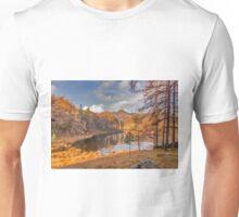 Autumn at Blea Tarn Unisex T-Shirt