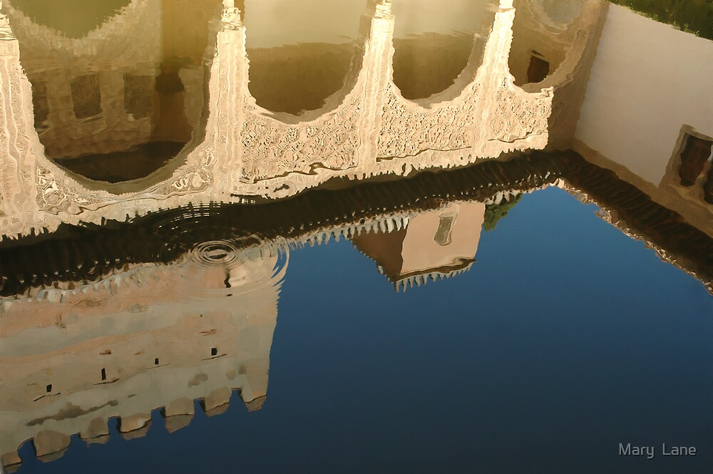 Alhambra Pool by Mary  Lane