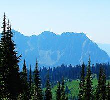 Mountain Scene 538 by jduffy111