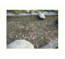 The Wishing Pond Art Print