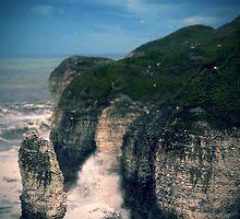 Flamorough Sea by Alex Worsley