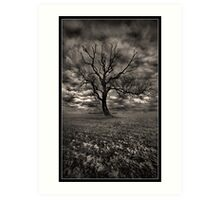The Tree On Roxby Bends Art Print