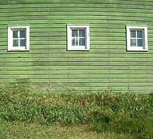 Green Barn by oblivianderson
