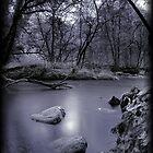 The stream by Alex Worsley