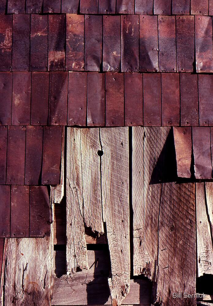 Wall-Bodie by Bill Serniuk