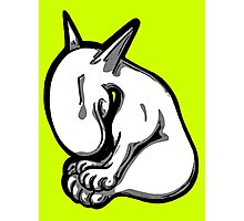 Shy English Bull Terrier  Photographic Print