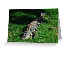 Later Gator Greeting Card