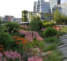 High Line Park - New York City by Hilda Rytteke