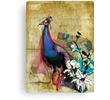 king peacock Canvas Print