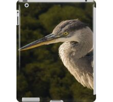 Focused Hunter - a Great Blue Heron Watching for Fish iPad Case/Skin