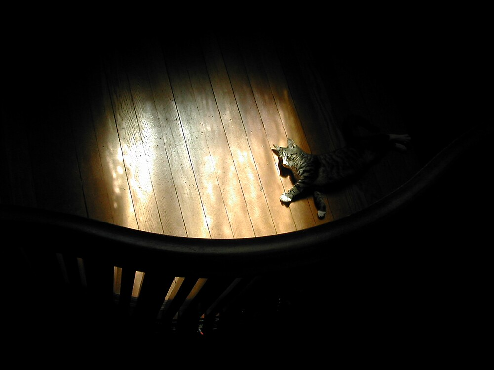 Mustapha Light & Dark by strangel
