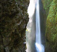Oneonta Falls by strangel