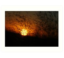Free State Sunset - Petrusburg, South-Africa  Art Print