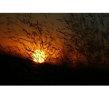 Free State Sunset - Petrusburg, South-Africa  Photographic Print