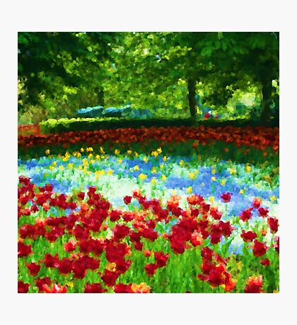 Colorful Impressionist Flower Field - II Photographic Print