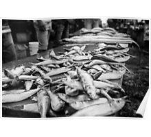 Kupang fish markets Poster