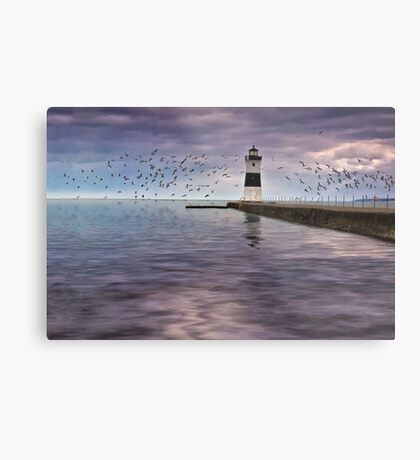 The Light On the Pier - Erie, PA Metal Print