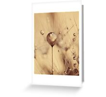 touch of gold Greeting Card