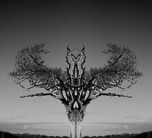 The Rihanna Tree Symmetry by Wrayzo
